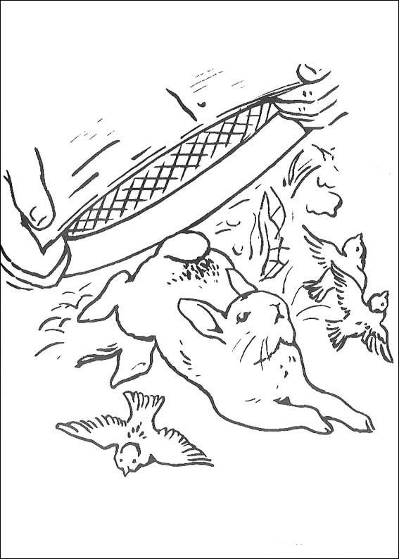 567x794 Kids N Coloring Pages Of Peter Rabbit