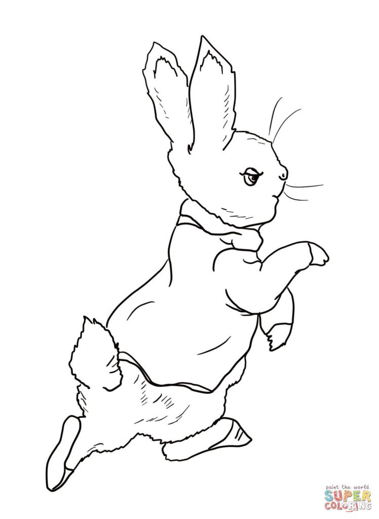 748x1024 Peter Rabbit Coloring Pages
