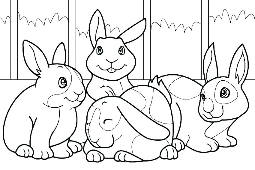 850x567 Peter Rabbit Coloring Pages Rabbit Coloring Pages Peter Rabbit New