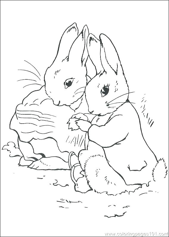 567x794 Beatrix Potter Coloring Pages Peter Rabbit Coloring Pages Free