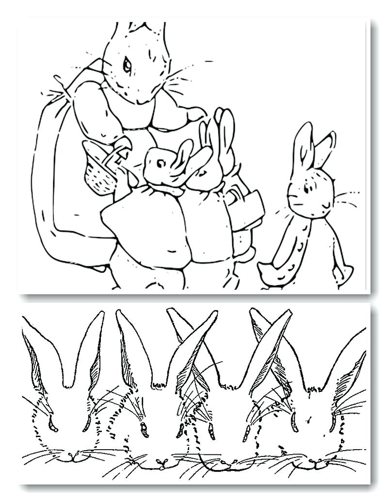 800x1035 Exploit Free Printable Peter Rabbit Coloring P Unknown Peter