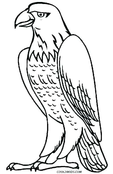 image relating to Eagle Printable titled Philadelphia Eagles Coloring Web pages Printable at GetDrawings
