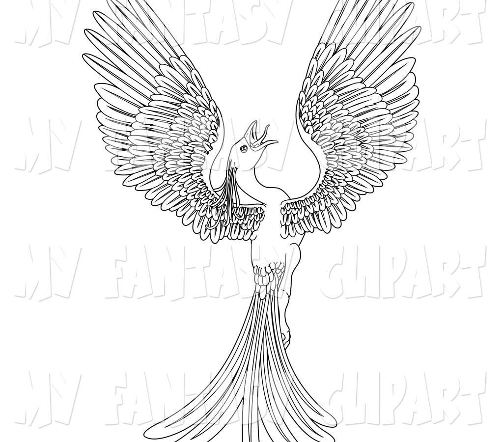 1024x900 Outstandingoenix Coloring Pages For Kids Wright Adults Printable