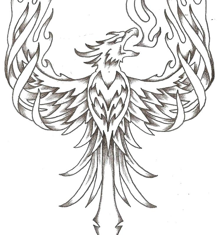 736x800 Phoenix Coloring Pages Cute Baby Animal Coloring Pages Cartoon