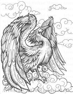 236x301 Phoenix Coloring Page Coloring Boys Phoenix, Adult