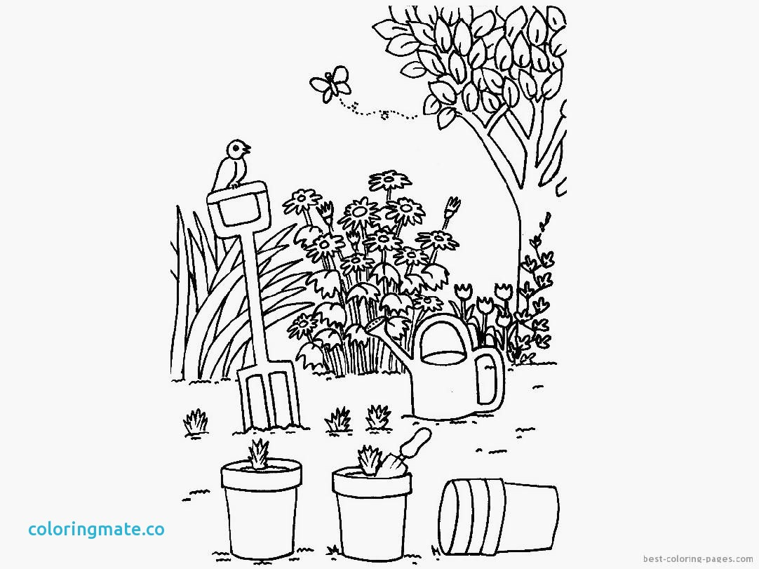 1082x811 Flower Garden Coloring Pages Beautiful Flower Garden Coloring