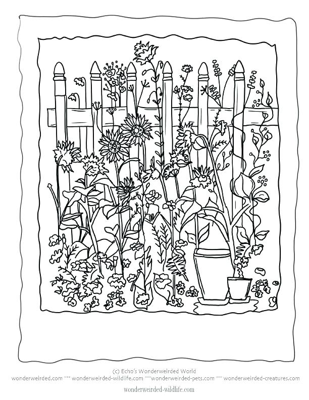 612x792 Flower Garden Coloring Pages Plus Flower Garden Coloring Page