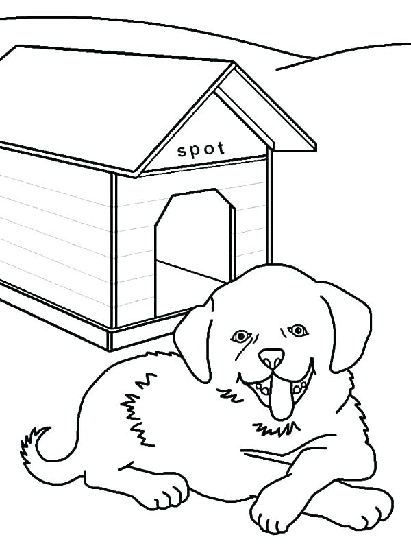 600x796 Oval Coloring Page Trend Coloring Page Of Dog Kids Pages Pictures