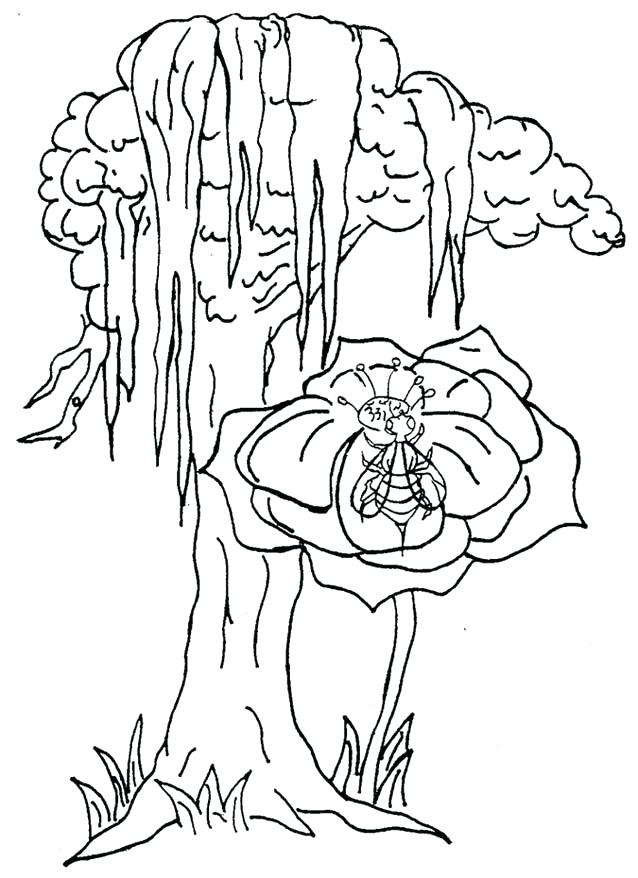 638x878 Catholic Saint Coloring Pages Photo Coloring Page Photo Frame