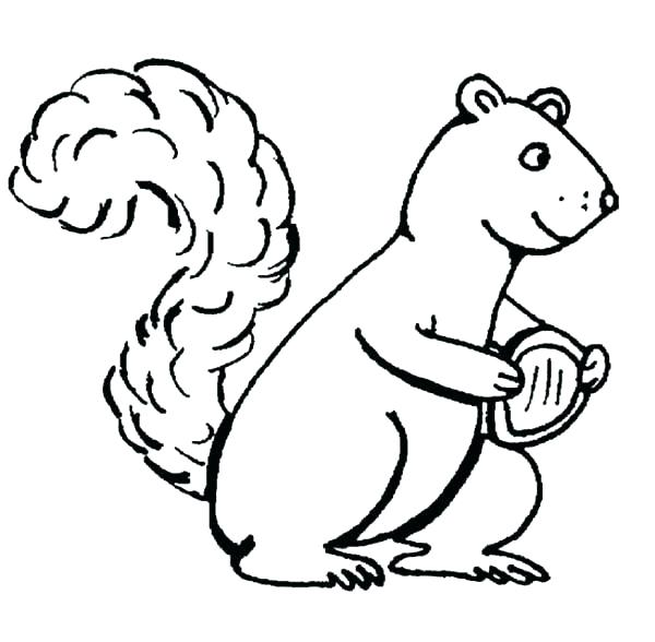 600x588 Squirrel Color Page Squirrel Coloring Page Coloring Pages Online