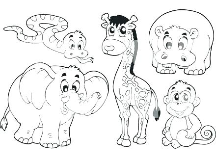 440x330 Baby Jungle Animals Coloring Pages Safari Coloring Pages Safari