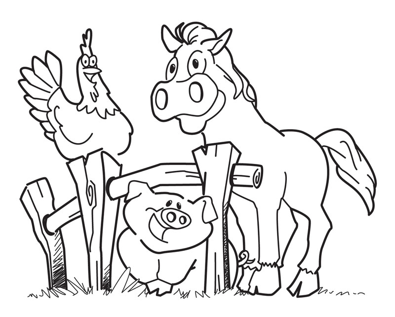 800x642 Free Printable Farm Animal Coloring Pages For Kids