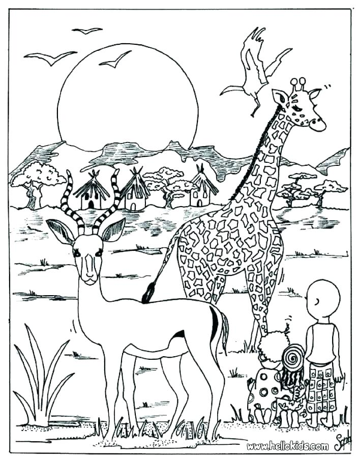 700x900 Wild Animal Coloring Pages Icontent