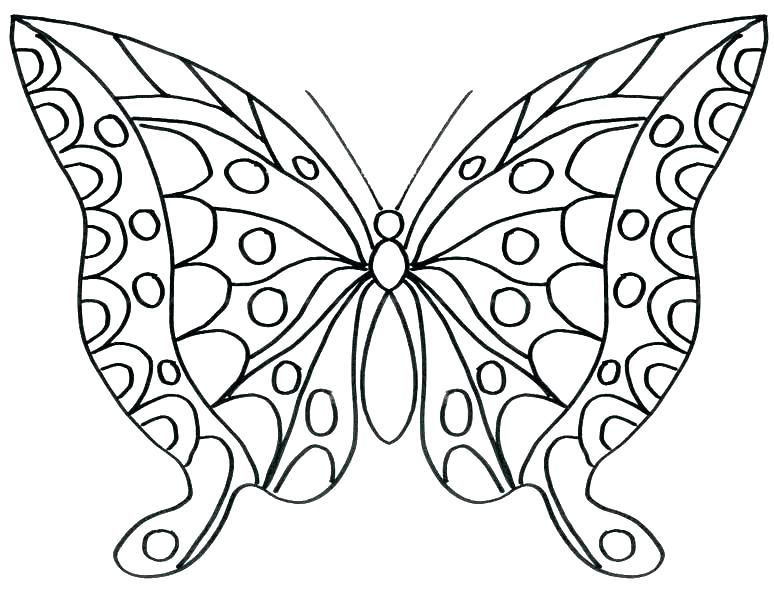 The Best Free Butterfly Coloring Page Images Download From 50 Free