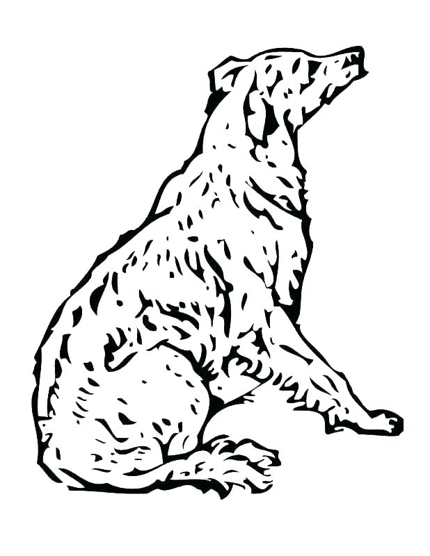 618x800 Free Coloring Pages Of Dogs