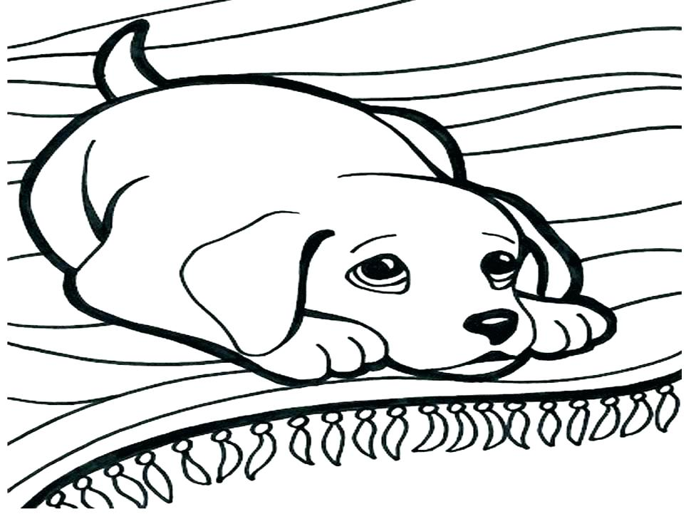 970x728 Cartoon Dog Coloring Pages Dog Coloring Pages Vector Of A Cartoon