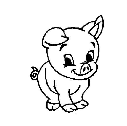 502x500 Cute Baby Pig Coloring Pages