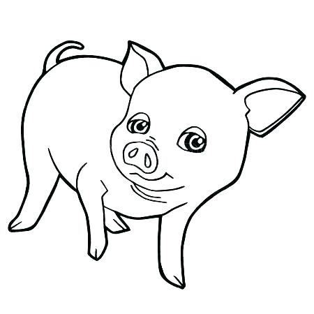450x450 Coloring Page Of A Pig Cartoon Pig Coloring Pages Baby Pig
