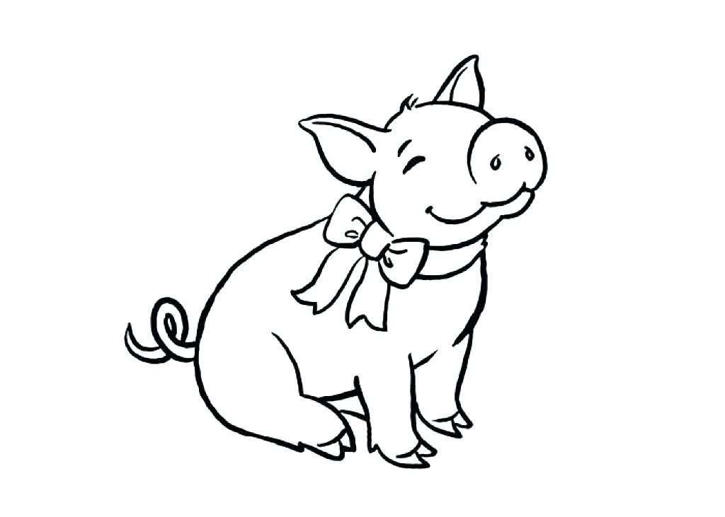 1024x731 Pig Color Page With Pig Color Page Pig Coloring Picture Pig