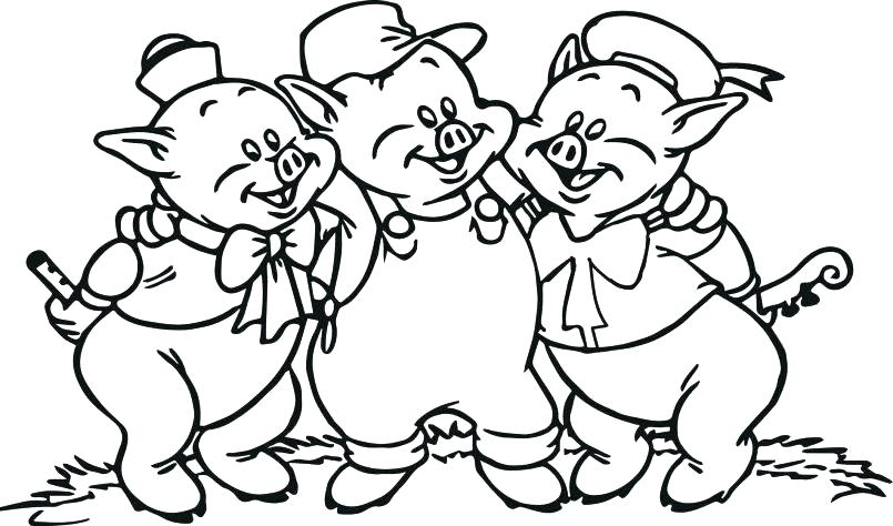 805x474 Coloring Pages For Kids Animals Coloring Pages Printable Animals