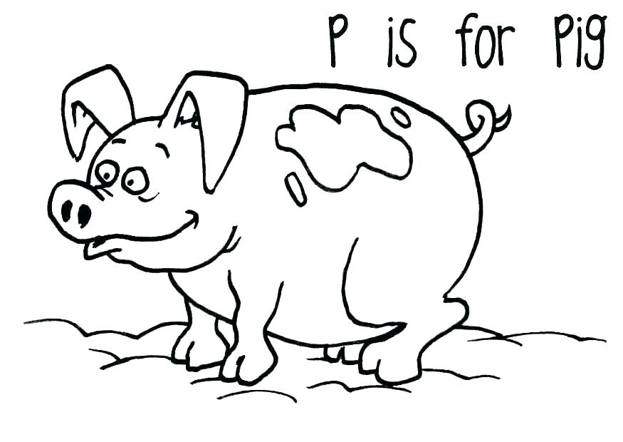 875x620 Cute Pig Coloring Pages Cute Pig Coloring Pages Printable Coloring
