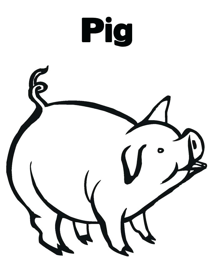 685x886 Free Printable Pig Coloring Pages For Kids Pig Coloring Page Pig
