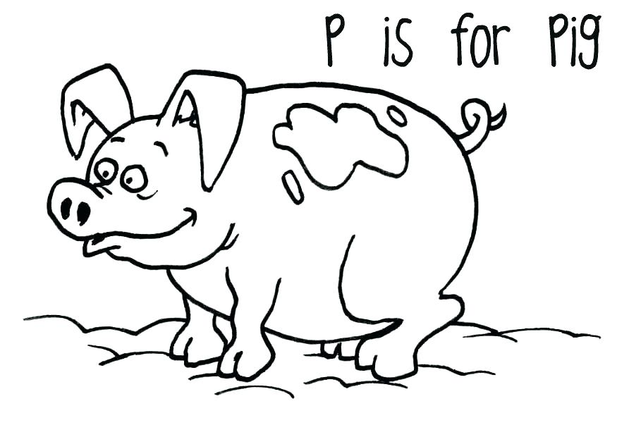 875x620 Cool Guinea Pig Coloring Pages Guinea Pig Coloring Page Pig