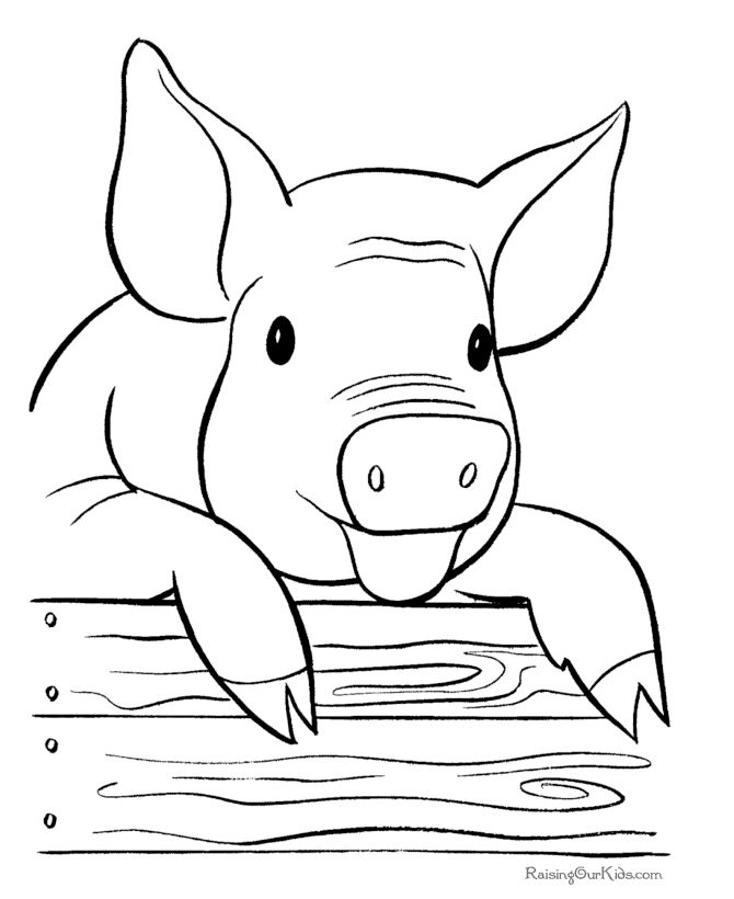 670x820 Pig Face Coloring Page