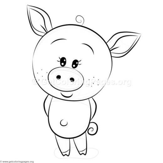 520x520 Pig Face Coloring Page