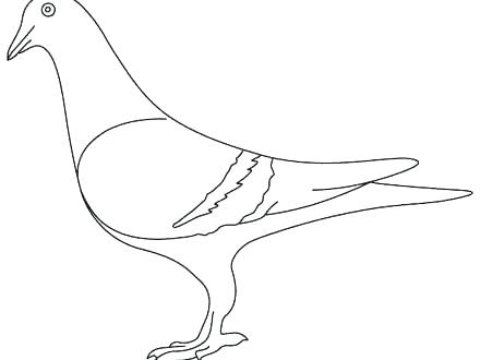 440x330 Mo Willems Coloring Pages Pigeon Mo Willems Coloring Pages Free