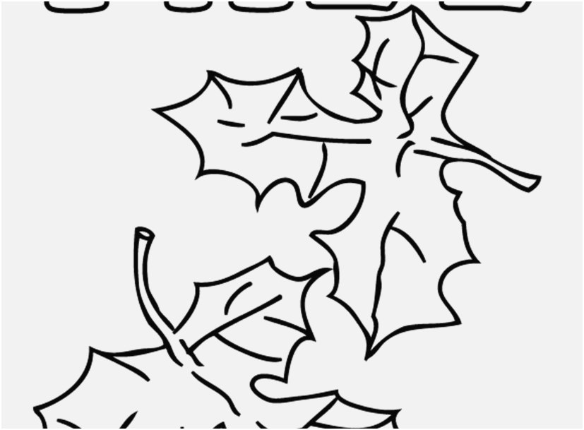827x609 Leaf Coloring Pages Concept Elegant Image Leaves Coloring Pages