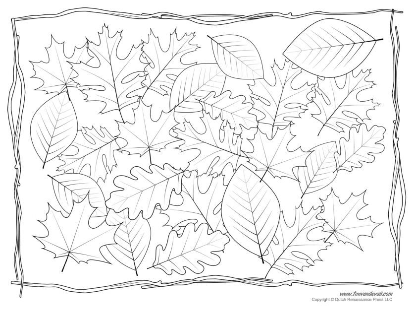 840x649 Click To See Printable Version Of Fall Autumn Leaves Coloring Page
