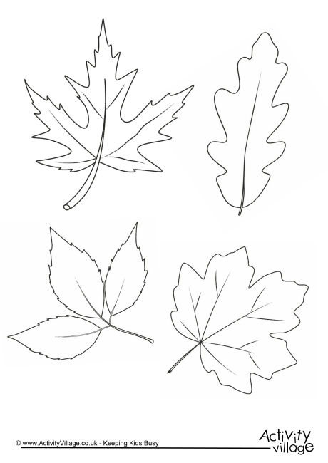 460x650 Autumn Leaves Colouring Page