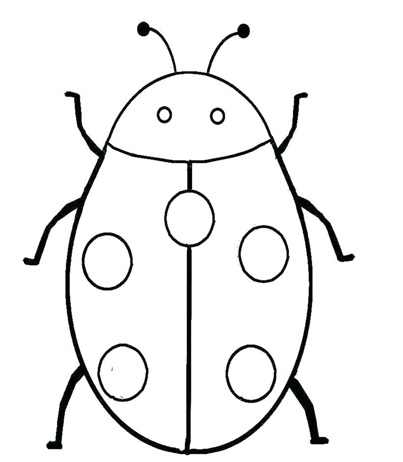 820x940 Bug Coloring Sheet Insect Pill Bug Coloring Sheet Teleks Site