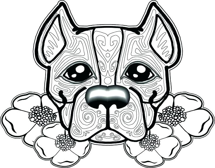 736x575 Coloring Pages Of Pit Bulls Coloring Pages Pin Pit Bull Coloring