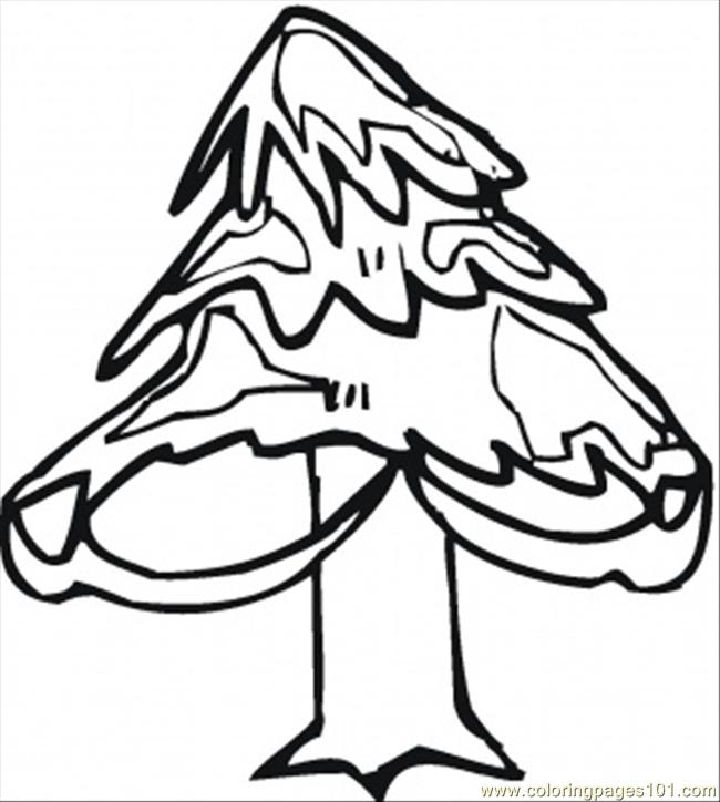 650x724 Pine Tree In Winter Coloring Page