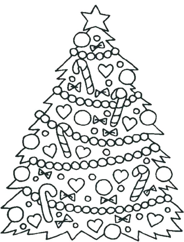 595x785 Printable Pine Tree Coloring Pages Free F Fuhrer Von