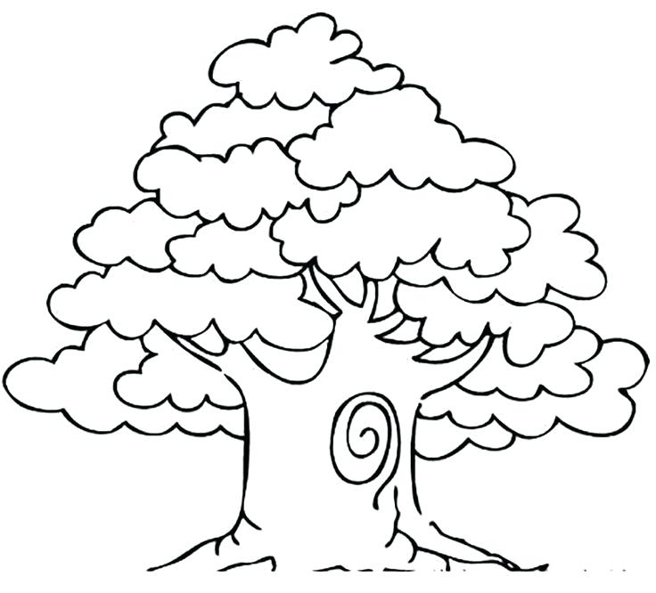 736x666 Tree Coloring Pages Bare Tree Without Leaves Coloring Pages Tree