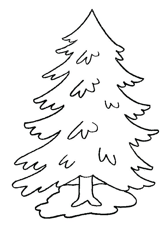 582x794 Trees Coloring Pages Coloring Page Tree Pine Trees Coloring Pages