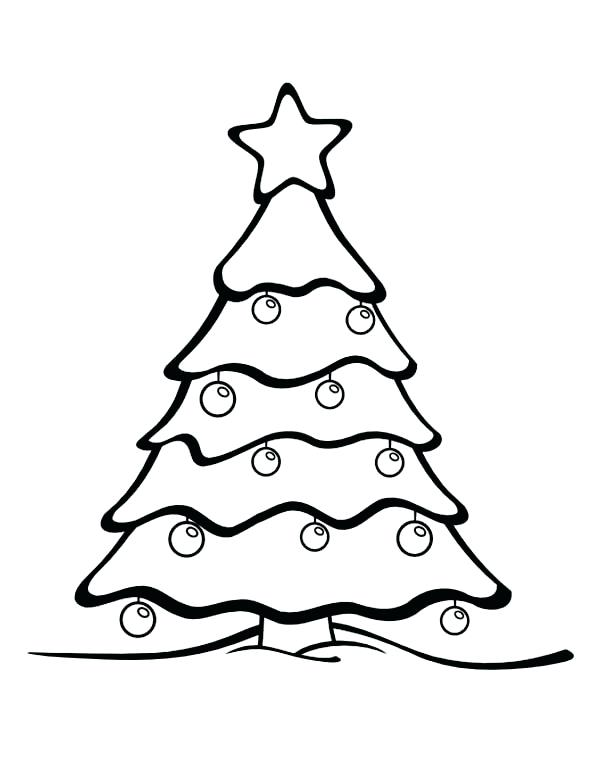 600x776 Best Easy To Color Tree Coloring Pages Kids Fir Tree Coloring