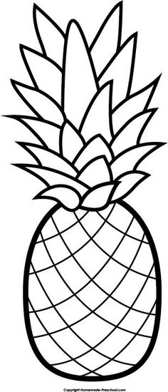 The Best Free Pineapple Coloring Page Images Download From