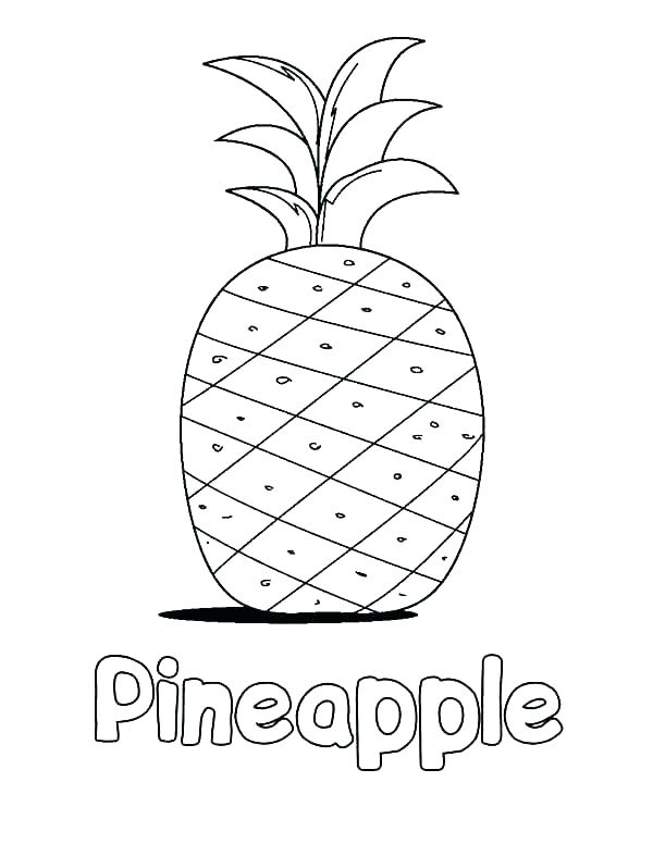 Pineapple Coloring Page At Getdrawings Com Free For Personal Use