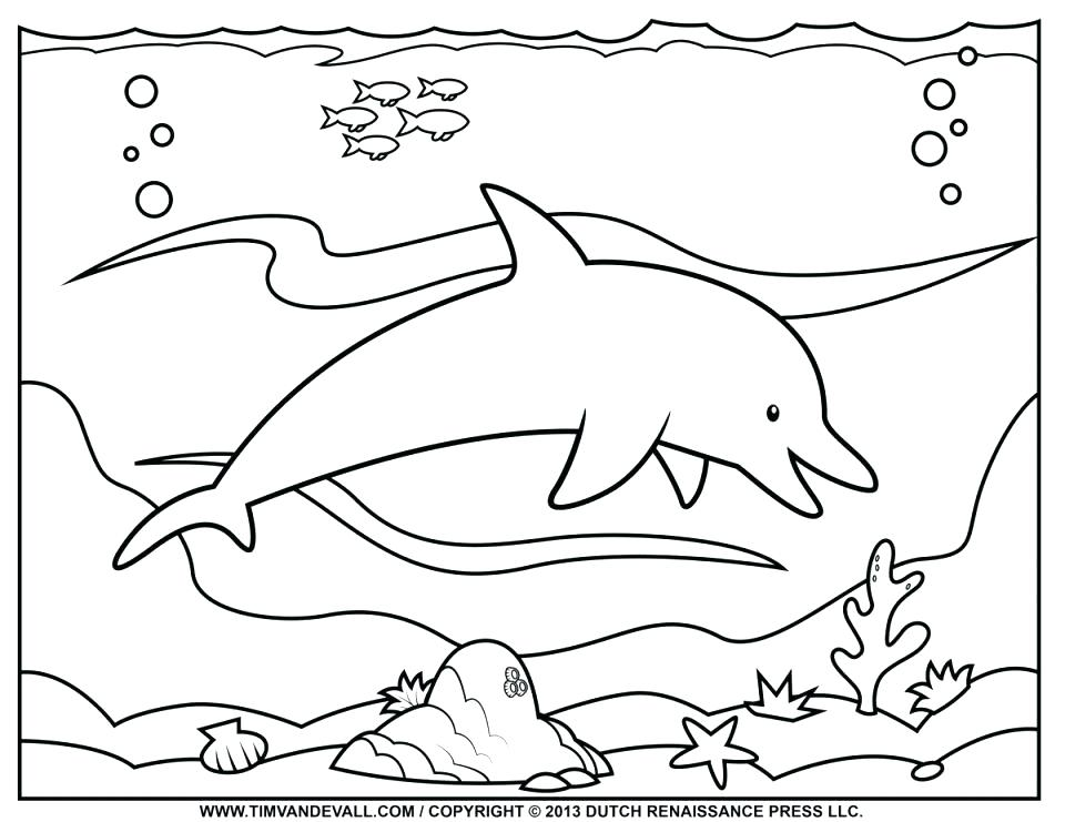 960x741 Cute Dolphin Coloring Pages Free Dolphin Coloring Pages Cute