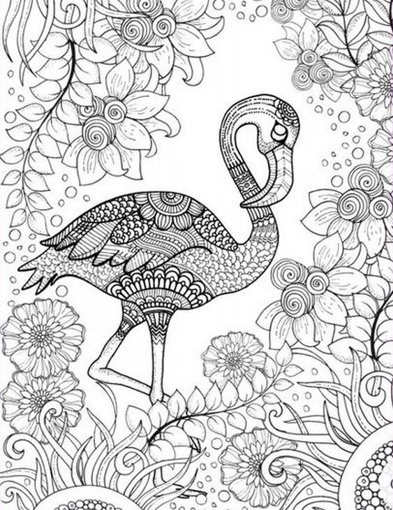 563x730 Free Printable Adult Coloring Page Of Pink Flamingo Bird