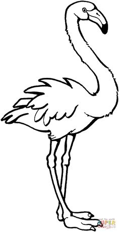 236x459 Pink Flamingo Coloring Page Flamingos Category Select