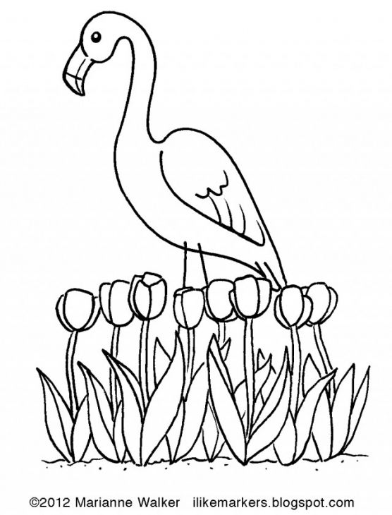 556x730 The Exotic Pink Bird Flamingo Coloring Page Free To Print Animal