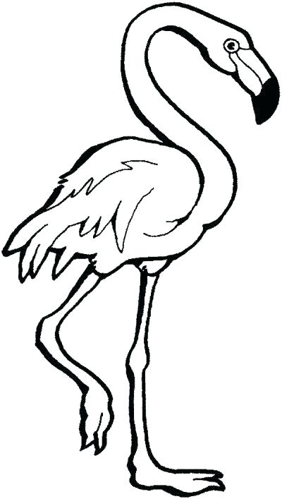 400x707 Pink Flamingo Color