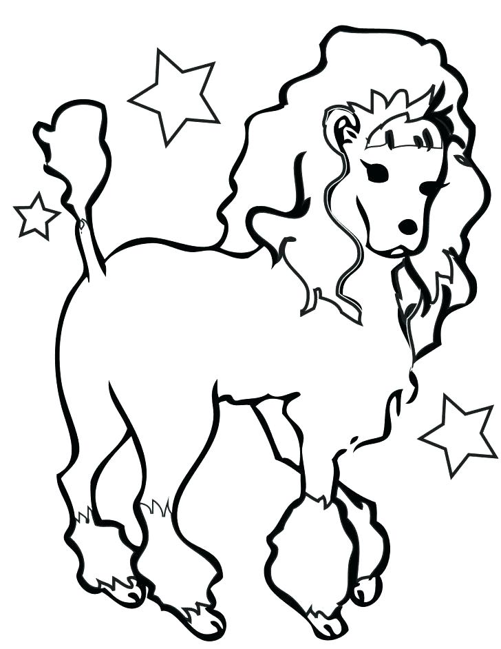 728x942 Poodle Coloring Page A Standard Poodle In Competition Coloring
