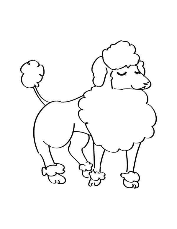 600x776 Poodle Coloring Page Poodle Coloring Page An Elegant Female Poodle