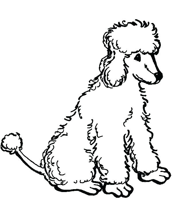 600x756 Poodle Coloring Page Poodle Coloring Page Poodle Coloring Pages